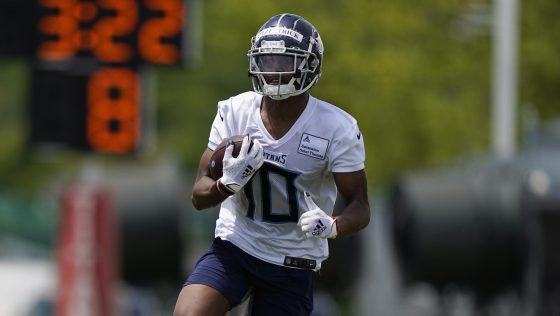 Dez Fitzpatrick: I'm going to work my tail off to prove the Titans right